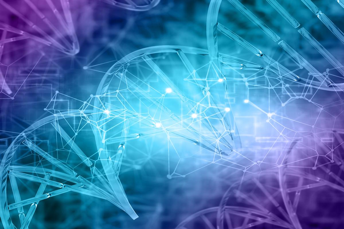 Descoberto mecanismo na divisão celular