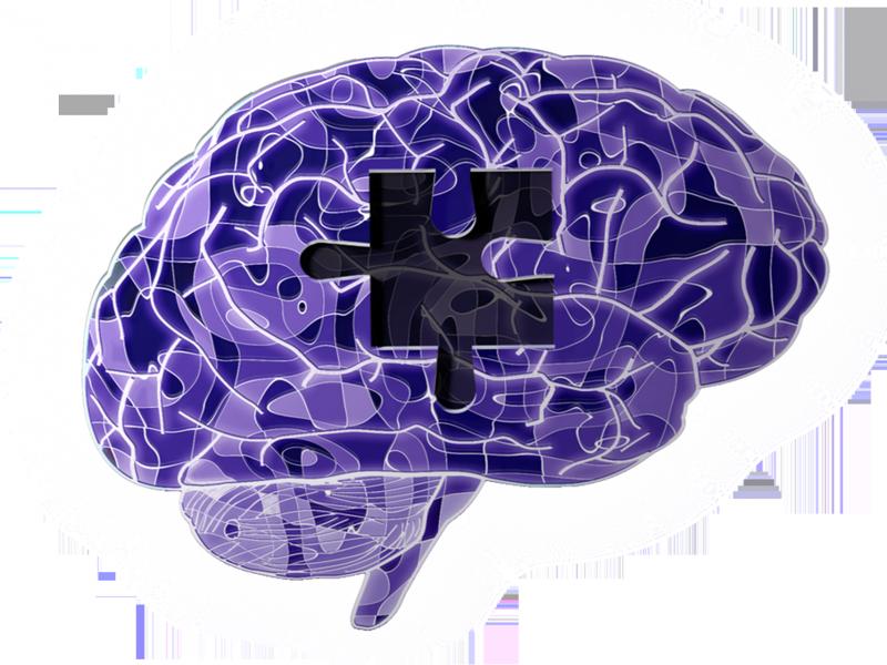 Stall Catchers: um jogo para combater o Alzheimer