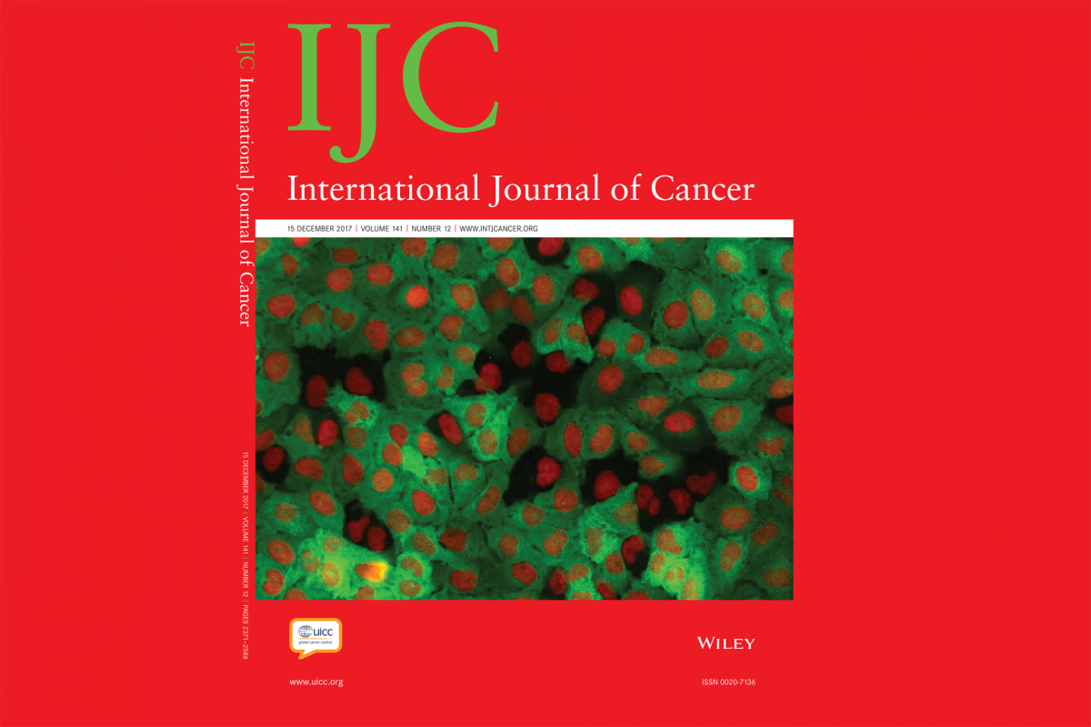 Investigação do CBMR é capa do International Journal of Cancer