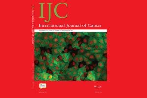 Investigação do CBMR é capa do International Journal of Cancer