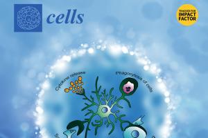 Investigadora convidada a integrar EB da revista Cells