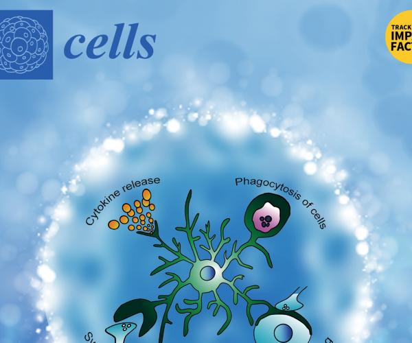 Investigadora convidada a integrar Editorial Board da revista Cells