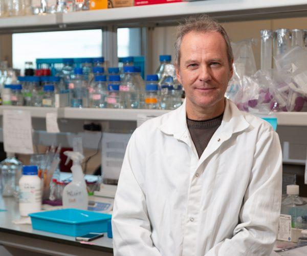 Livro sobre proteína para tratamento do cancro